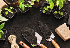 Oderings | Gardening Accessories