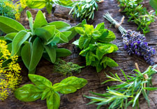 Herbs Cooking Fresh