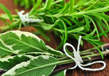 seed range, fresh and healthy